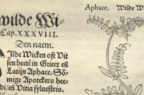 Project medische handschriften WEMAL & Universiteitsbibliotheek Utrecht
